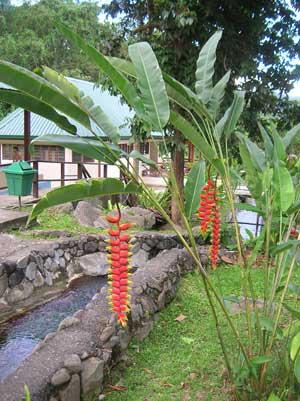 96 7fm Malayalam. Kinabalu National Park.